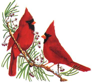 jbc s birds non animated free santa clipart borders Christmas Borders and Frames